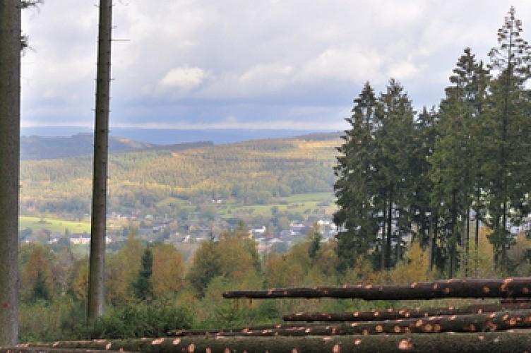 Panorama et crêtes: Rodt