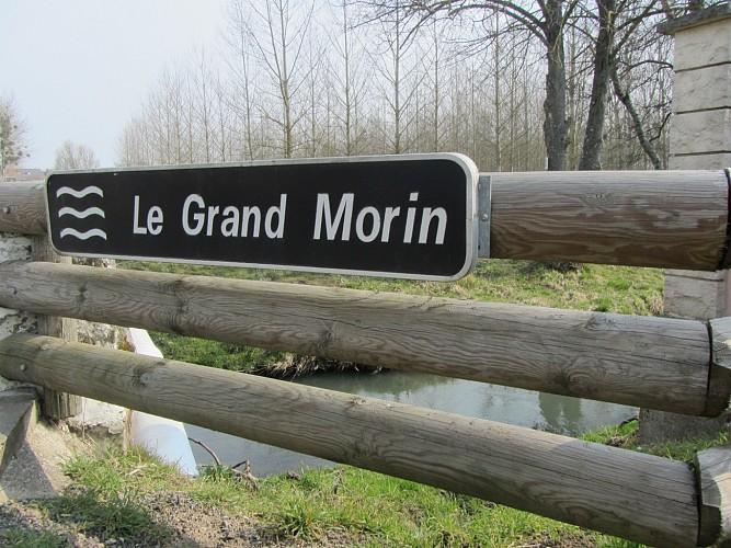 Circuit des lavoirs d'Esternay - Quartier d'Esternay le Franc