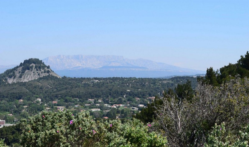 SIMIANE-COLLONGUE - Balade dans le Canyon Provençal