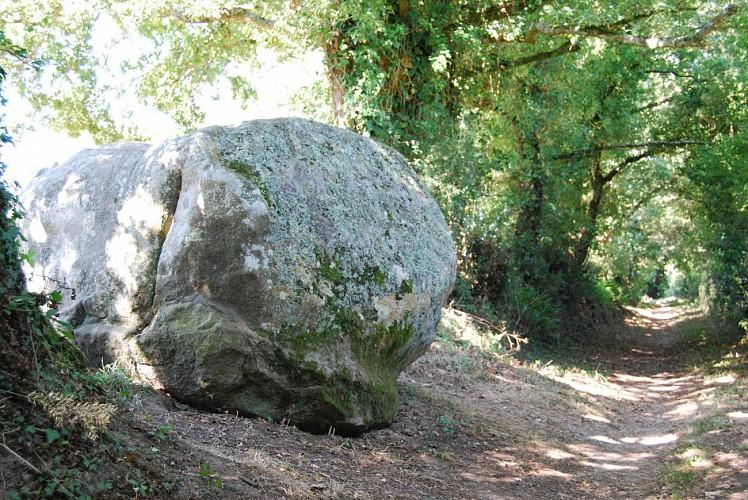 LE POIRE S/ VIE - AIZENAY - Le Sentier des Mégalithes (R)