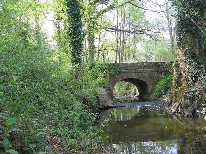 Pont sur l'Ardoux