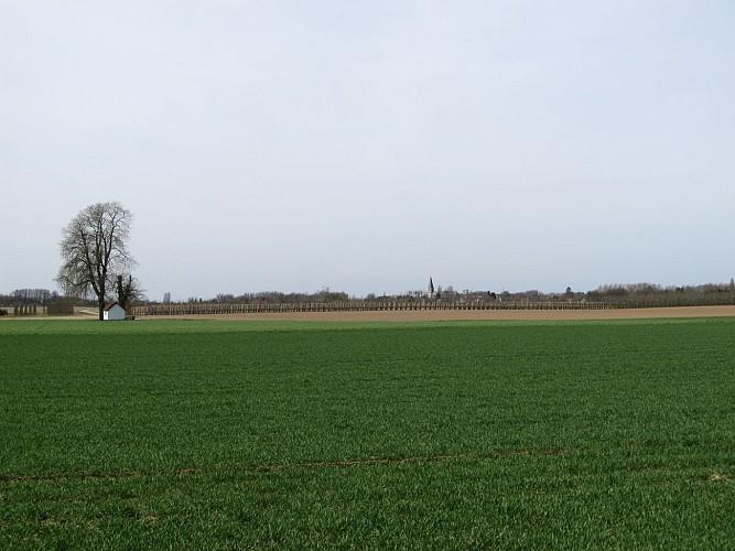 Heilige huisjes: mythes en legenden. Fietsroute Alden Biesen, Martenslinde, Eigenbilzen, Hees, Rosmeer, Grote-Spouwen