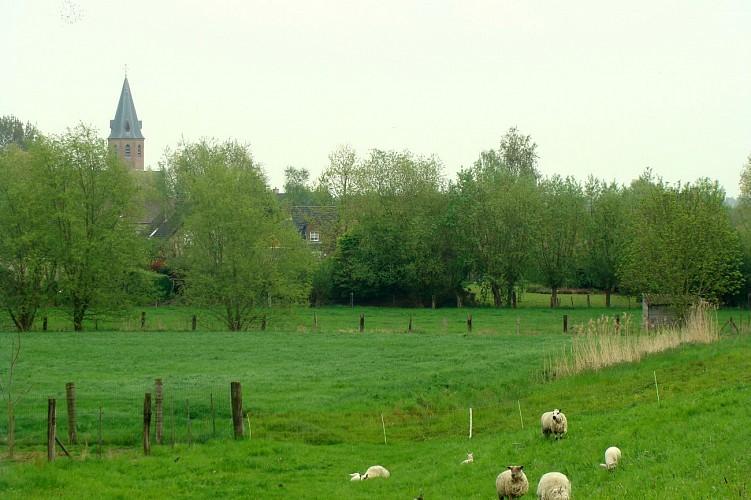 Religieus erfgoed rondom Temse-Hamme. Fietsroute 'Heilig Harnas'