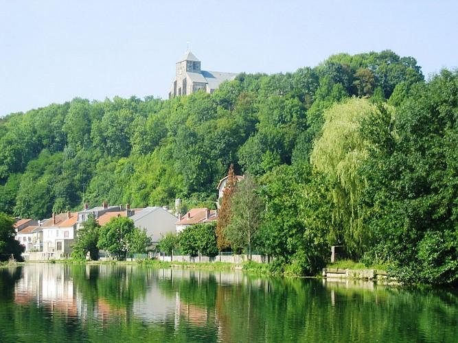 Découvrez le Ciel de Meuse : Portes d'Argonne