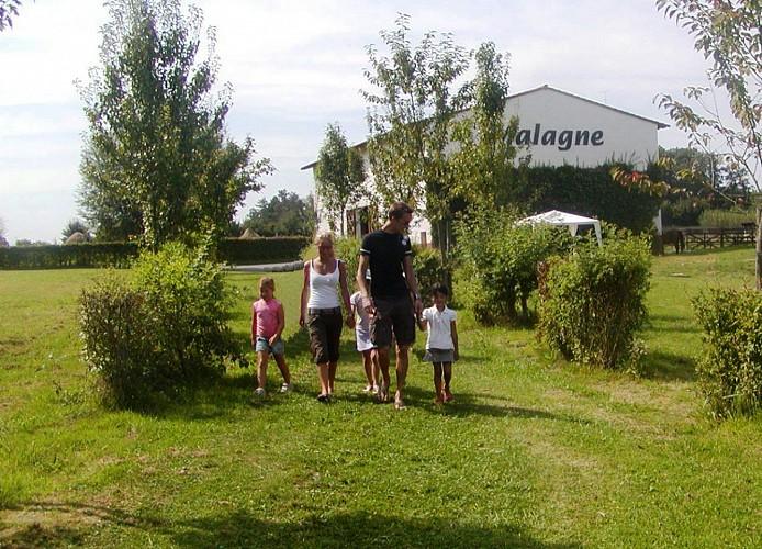Une Balade au coeur de la Famenne à la découverte d'une Villa gallo-romaine!