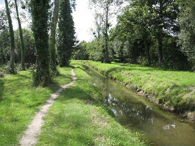 """Circuit """"Les Mines de Languin"""" - NORT-SUR-ERDRE"""