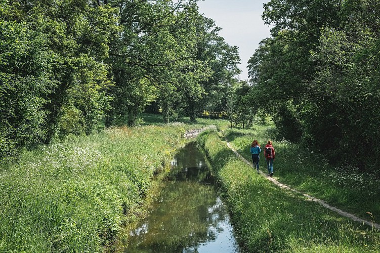 """Circuit """"Le Petit Canal"""" - NORT-SUR-ERDRE"""