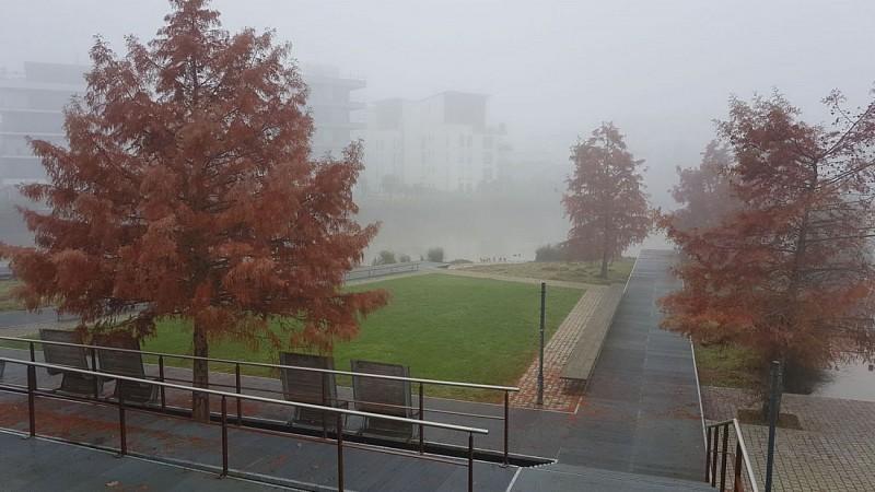 Le jardin de la confluence sous la brume