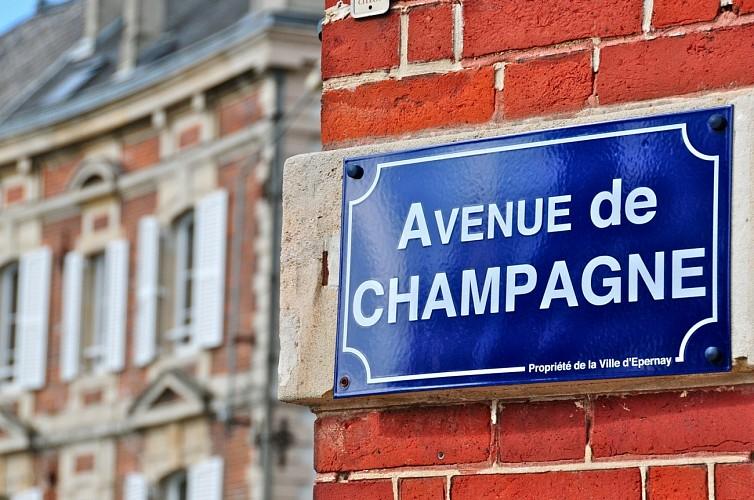 Le vignoble autour de Reims