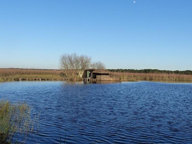Du lac, cap sur les marais avec le sentier des canaux !