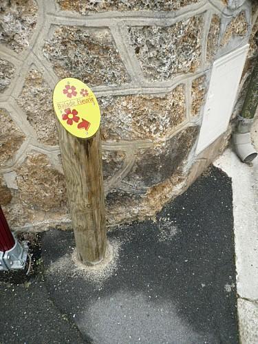 Balade fleurie Rilly-la-Montagne