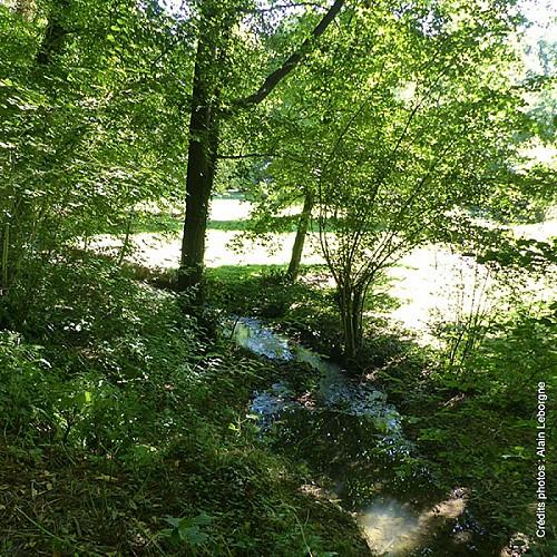 La rivière Orange
