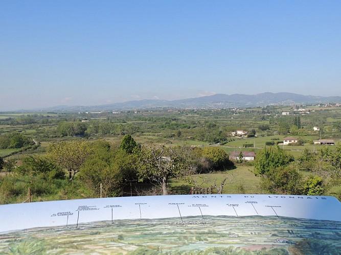 "Rando Panorama "" Les paysages de Montagny """