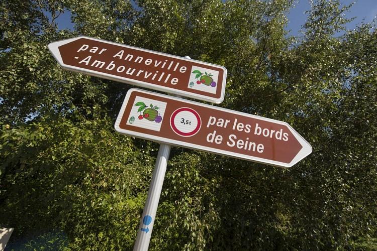 La Route des Fruits dans la boucle d'Anneville