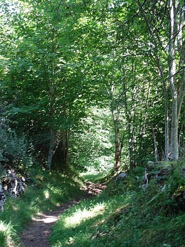 Sentier de découverte du patrimoine historique et naturel des rives de la couze Pavin