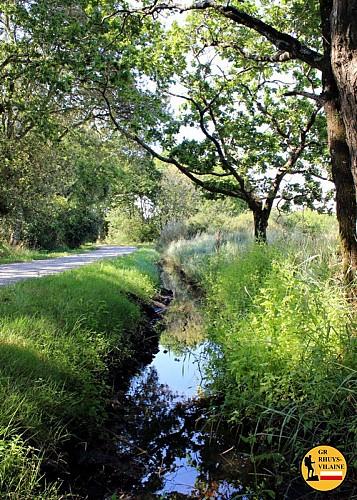 GR Rhuys-Vilaine (Officiel): étape 14c St Armel / Le Tour du Parc