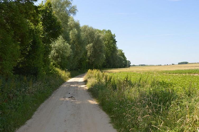Chemin du Meunier
