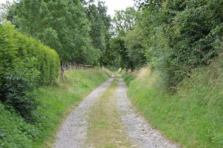 Sentier des Plantis