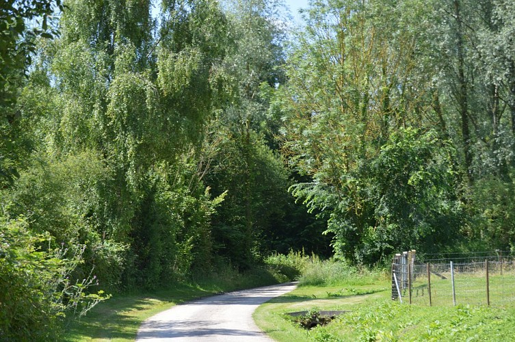 Sentier Saint-Maclou