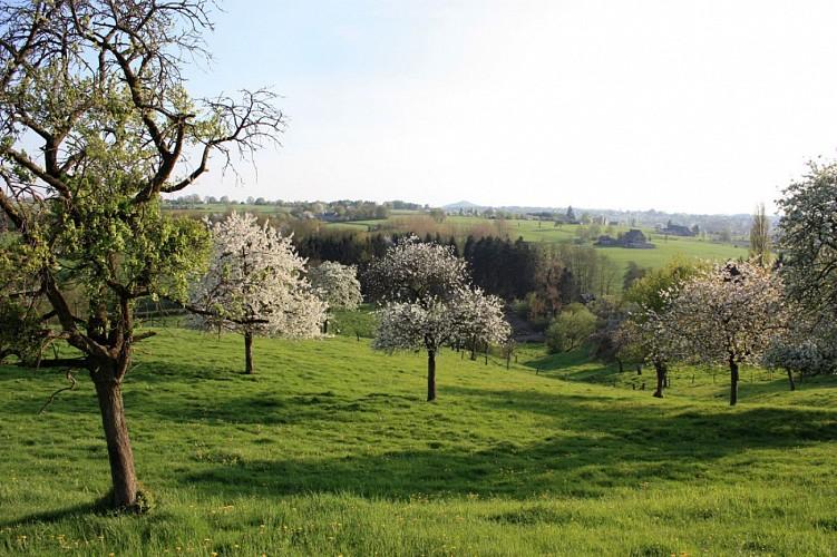 Route UNESCO - Etape 11 de Raeren à Blegny