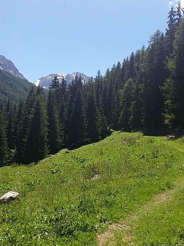 Hiking route : Le Bief