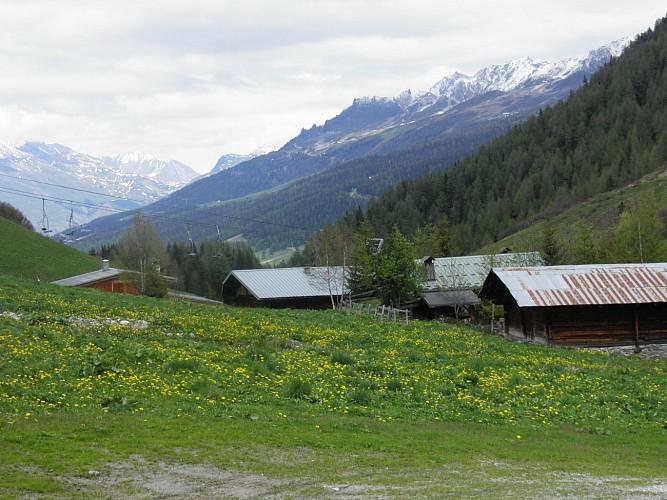 La vallée des Bauches