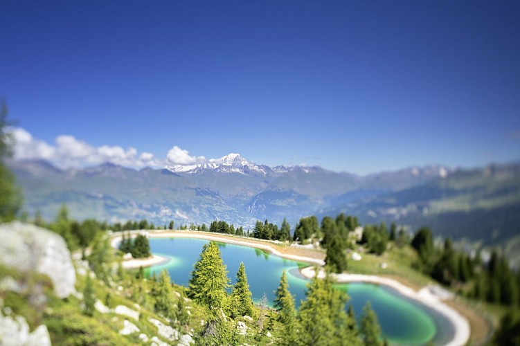 Hiking route: The Lac des Pierres Blanches starting from Plan Bois