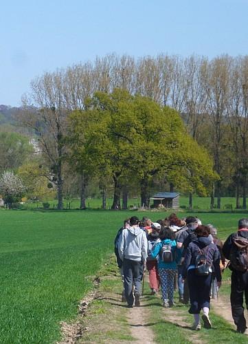 Circuit Forêt de Coye - Abbaye d'Hérivaux