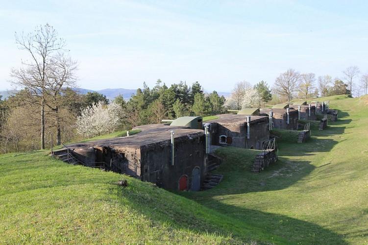 Sur les traces d'un géant - Fort de Mutzig