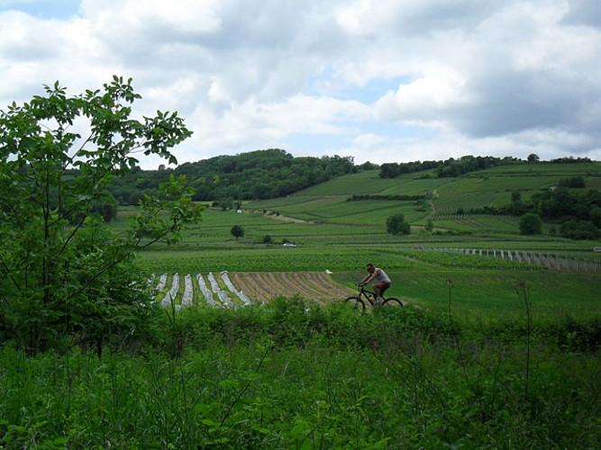 Circuit cyclo Escapades à travers champs