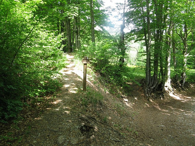 Sentier Dominique Villars