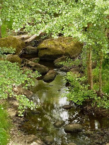 Entre doux vallons et petites rivières