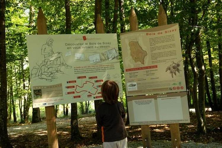 Sentier Randocroquis du Bois de Sizay