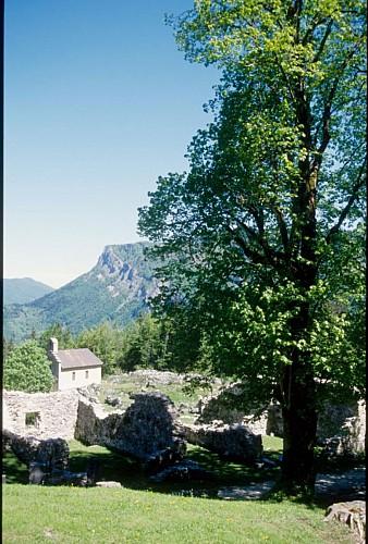 Les ruines de Valchevrière