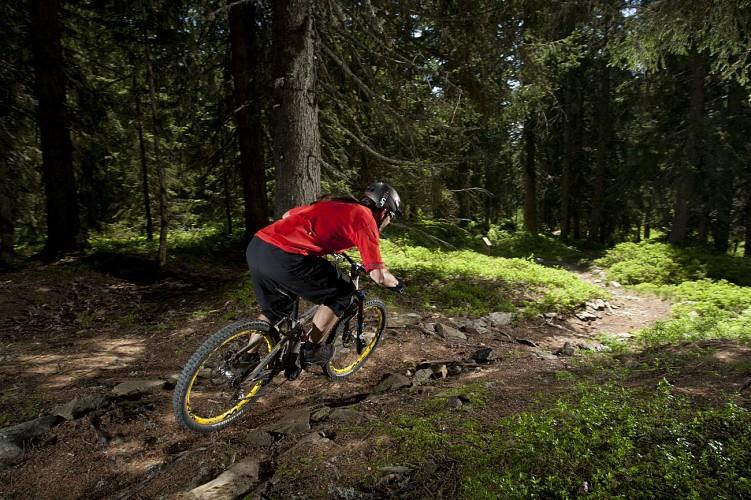 Enduro MTB - Bikette