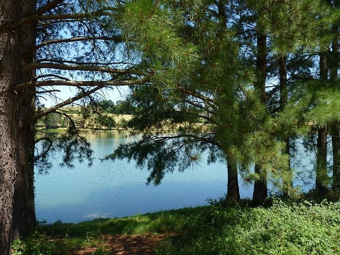 Du collège au lac de Serres-Castet en VTT