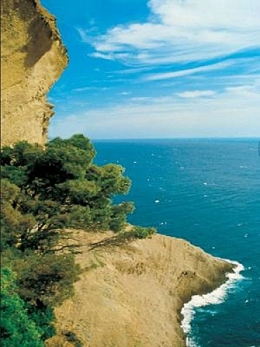 Topo 13 : Cap Canaille - La Ciotat, 394m au dessus de la mer