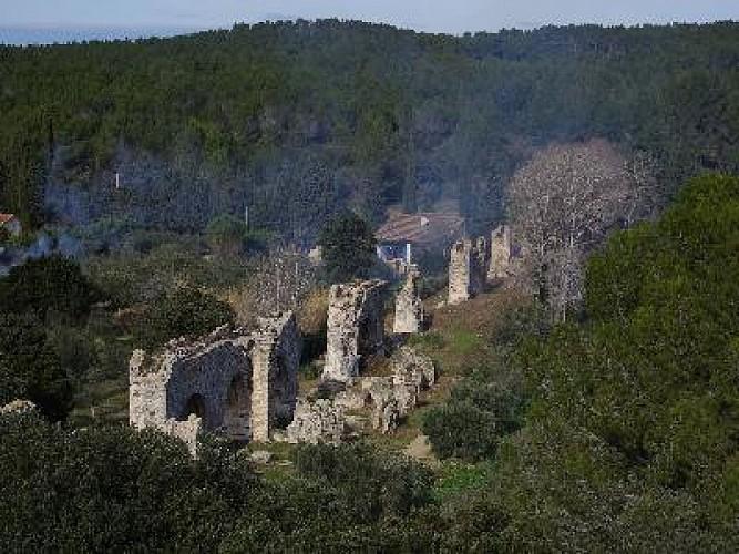 Fontvieille et son patrimoine culturel et naturel