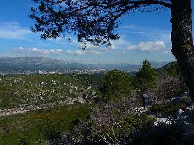 Carnoux : le plateau de Languilard