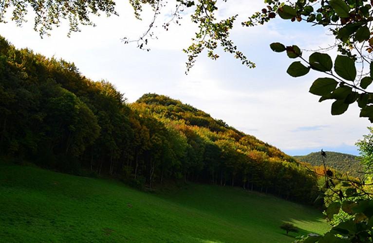 Barbières - Col de La Sambie
