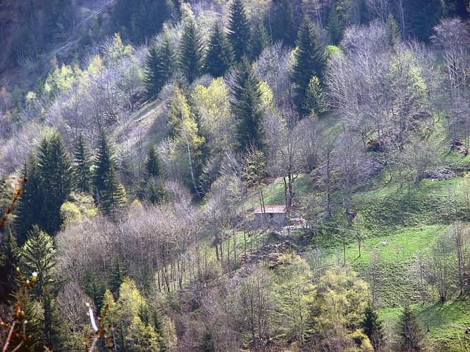 "Hiking ""Tour du Pleynet et Laffreyte"