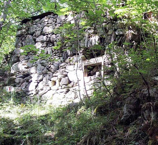 Ruines du Pleynet