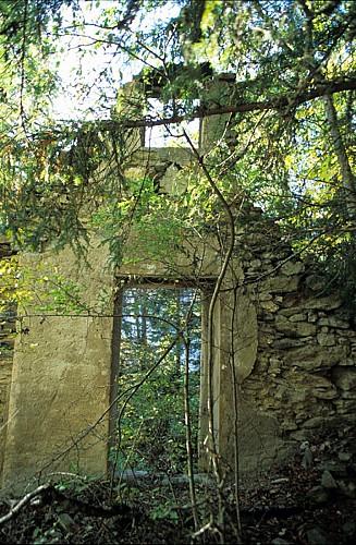 """Trail """"of the 2 Alpes Vénosc"""""""