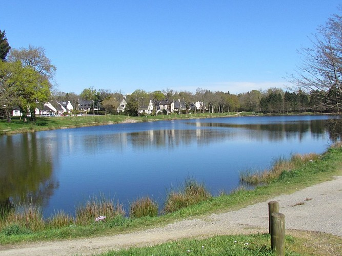 Vallée de la Vilaine amont n°11