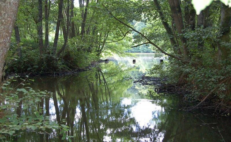 La Fontaine de Saint-Raoul