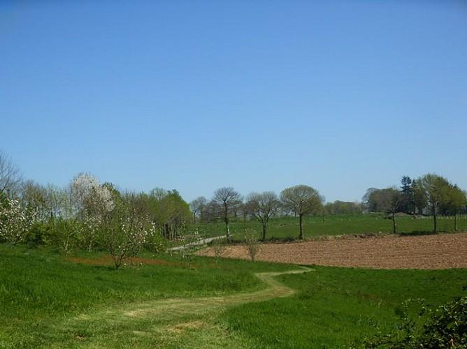 De la toile à l'agri-culture