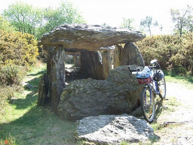 Site mégalithique de Tréal