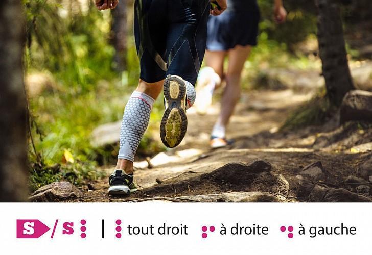 Huy - Trail Permanent S 7,5 km - Départ : Office du tourisme Ville de Huy