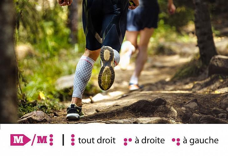 Huy - Trail Permanent M 18,5 km - Départ : Office du tourisme Ville de Huy
