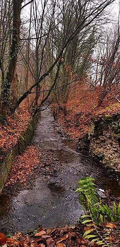 La vallée de Villencourt et les bois du Val Saint-Lambert